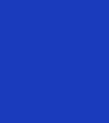 flower-overlay