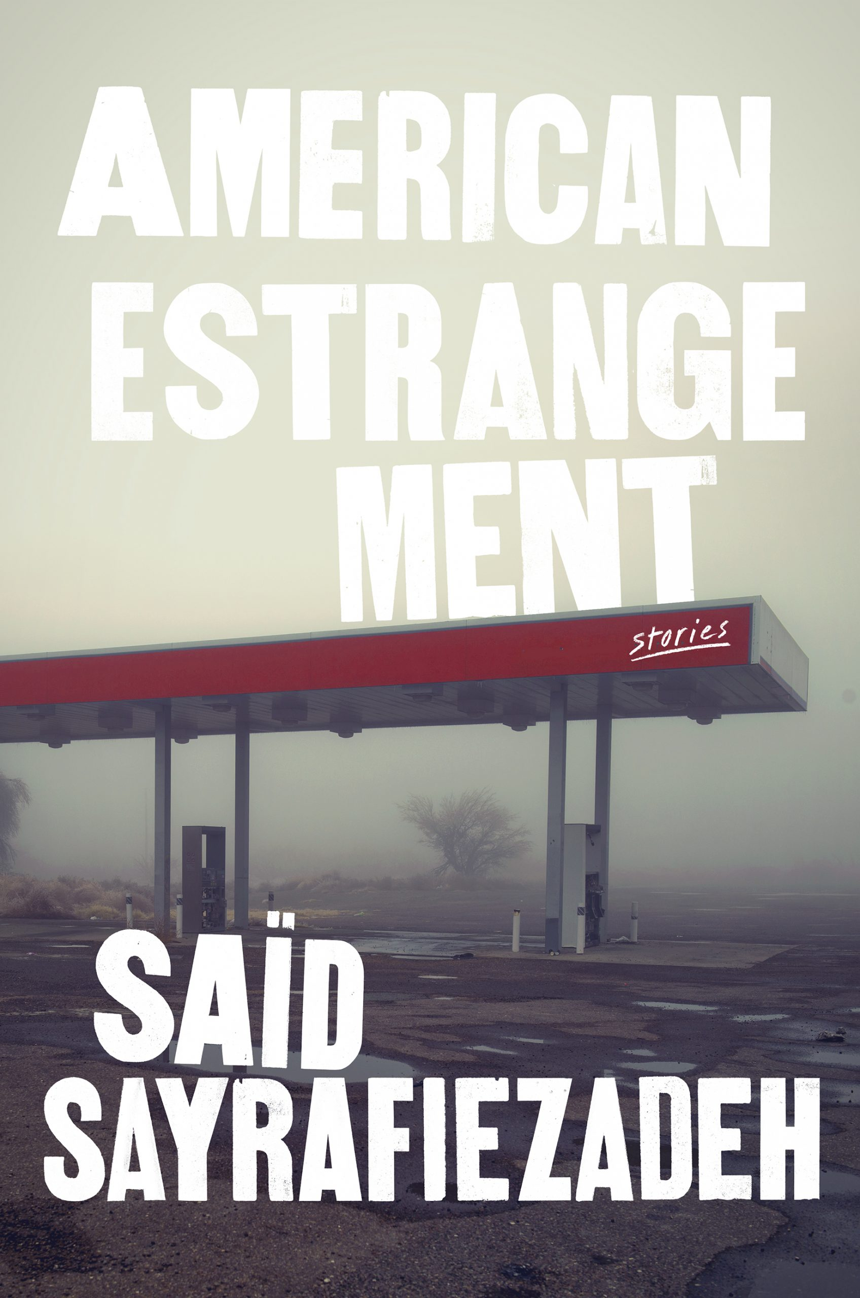 "Book Cover Image of ""American Estrangement"""