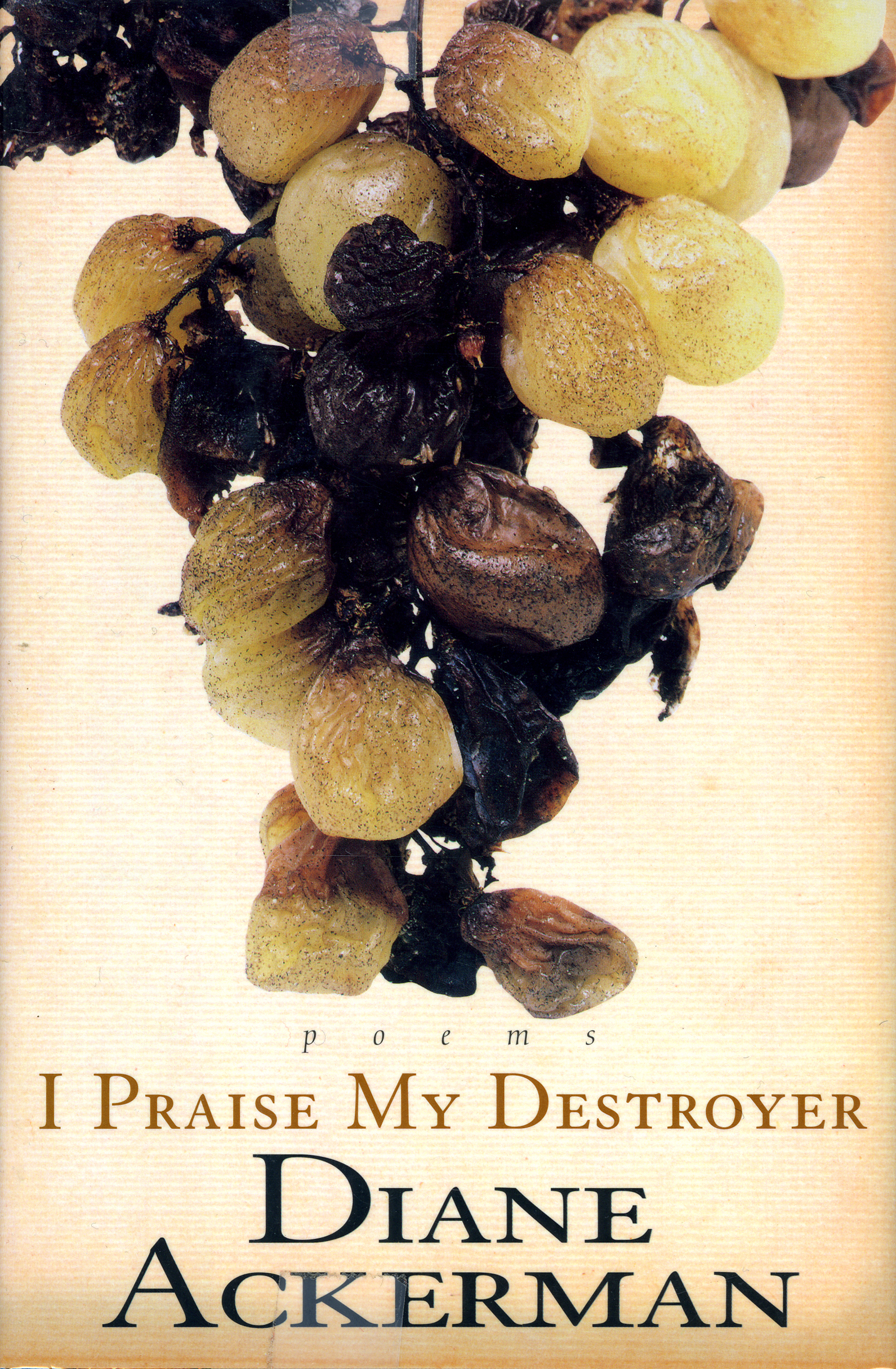 I Praise My Destroyer by Diane Ackerman