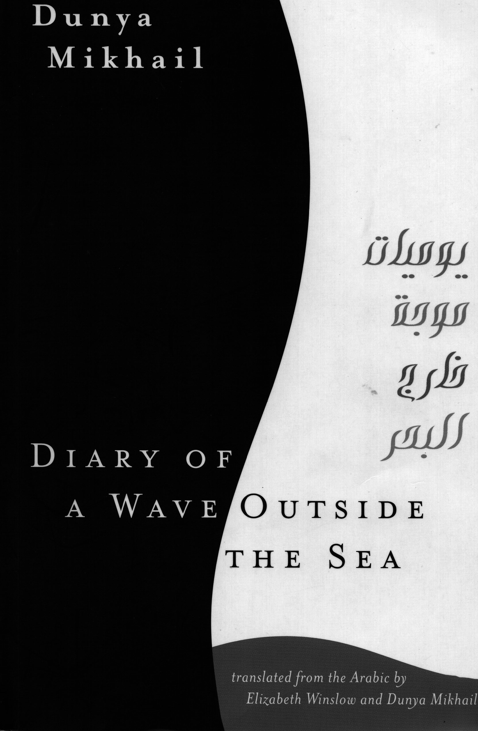 Diary of a Wave Outside the Sea by Dunya Mikhai