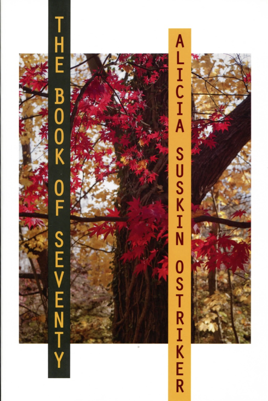 Book of Seventy by Alicia Ostriker