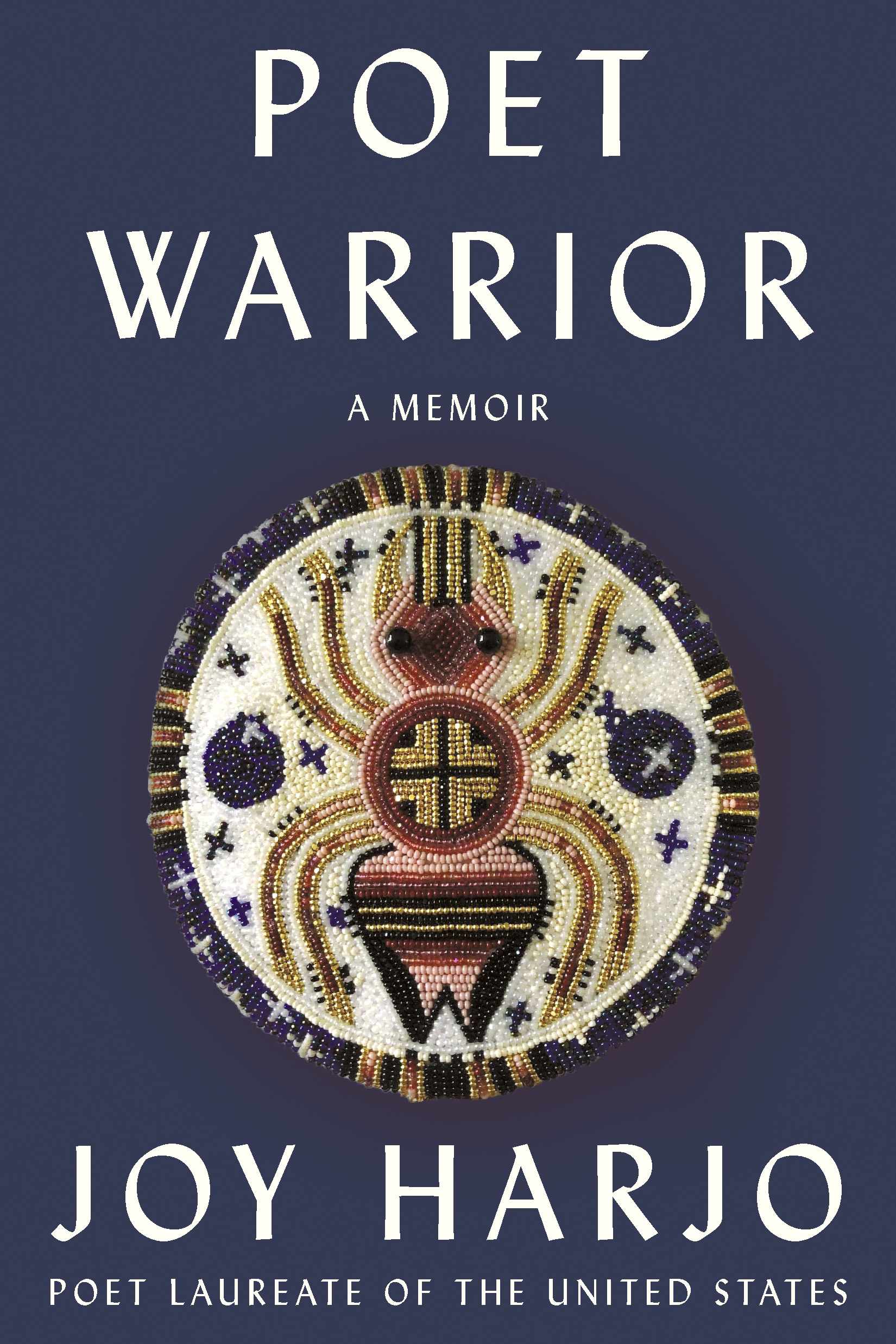 """Book Cover Image of """"Poet Warrior"""""""
